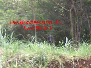 b0148945_2258830.jpg