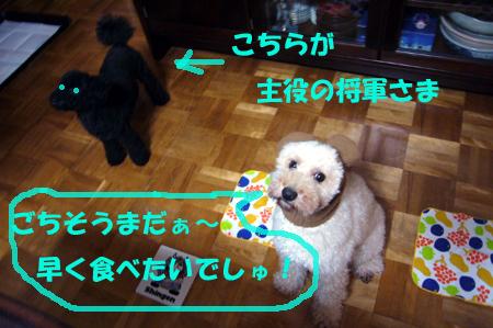 d0070047_2059554.jpg