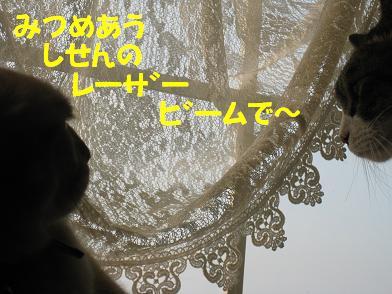 b0151748_1955282.jpg
