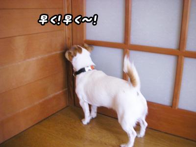 f0129214_12541859.jpg