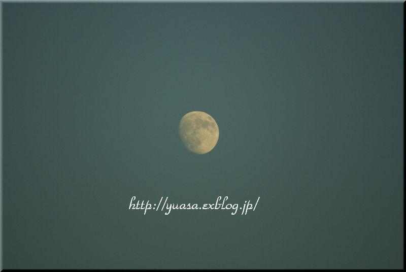 f0156117_8284072.jpg
