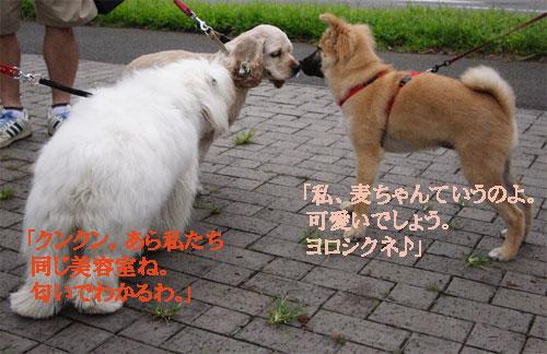 b0079523_12482153.jpg