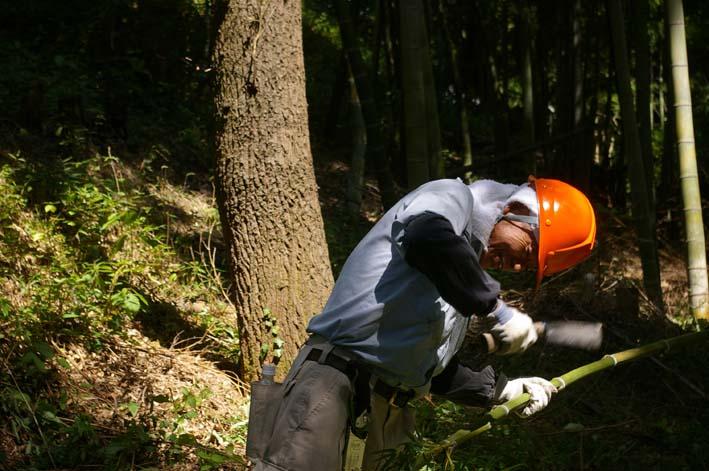 山に経済を戻す!「緑のダム北鎌倉」の取り組みをリポート_c0014967_1155086.jpg