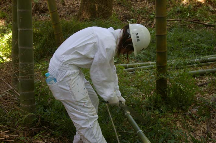 山に経済を戻す!「緑のダム北鎌倉」の取り組みをリポート_c0014967_116566.jpg