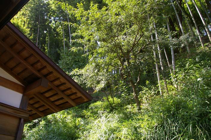 山に経済を戻す!「緑のダム北鎌倉」の取り組みをリポート_c0014967_182997.jpg