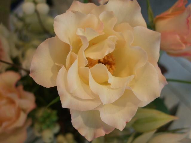 オークリーフ花の教室(長尾さんの作品)_f0049672_141445100.jpg