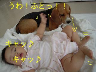 b0104420_9512927.jpg