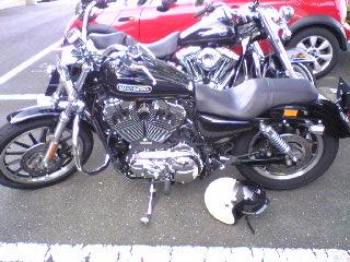 夫婦Harley☆ ~その2~_a0099129_2114518.jpg