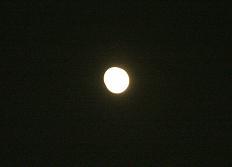お月見しましょ_f0139963_201015100.jpg