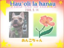 b0111876_1651243.jpg