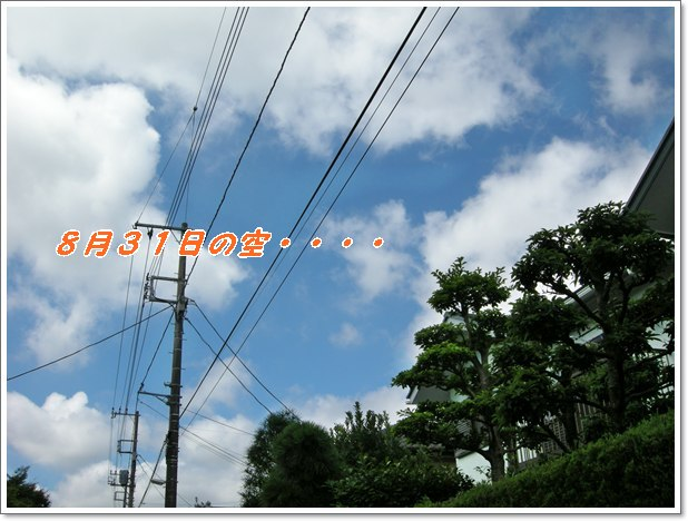 d0001985_22101173.jpg