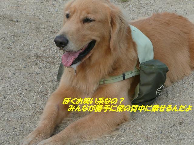 f0114128_9363238.jpg