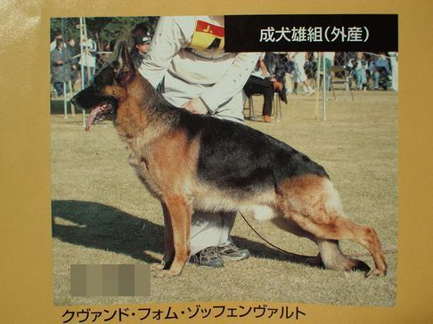 f0088731_20113635.jpg
