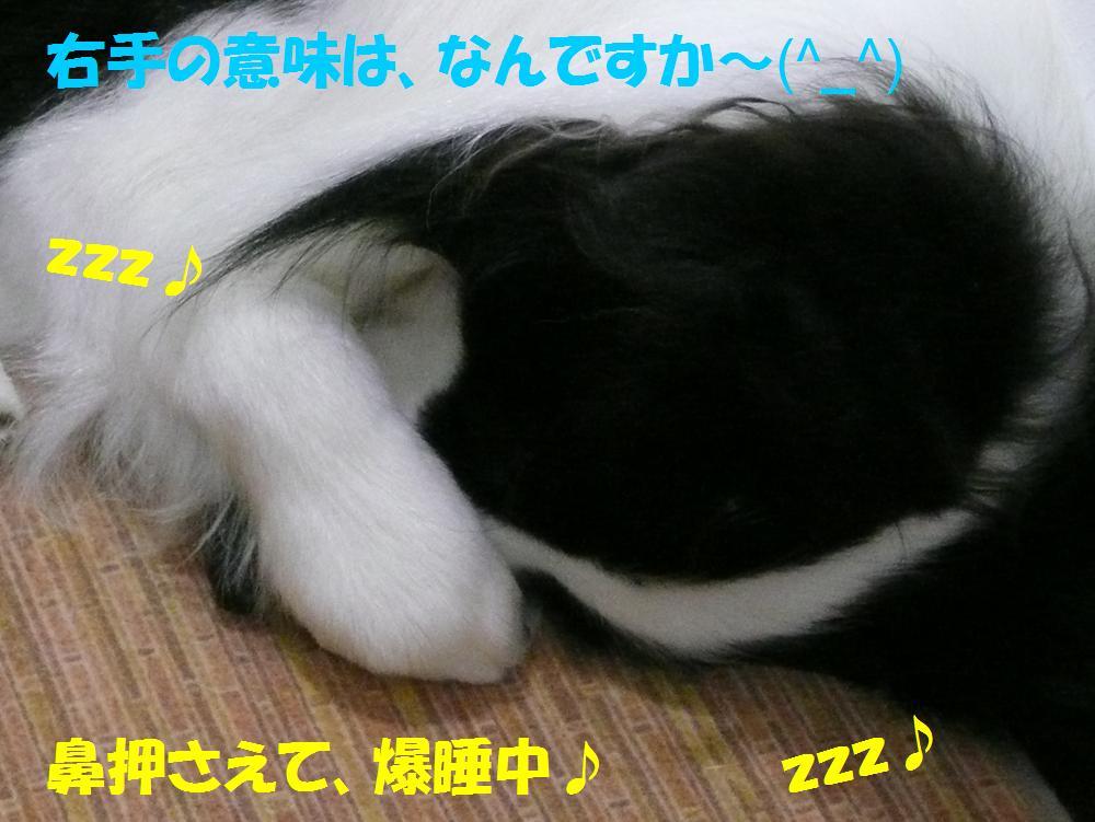 c0147241_881634.jpg