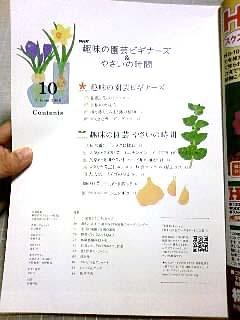 「趣味の園芸ビギナーズ&やさいの時間」10月号_b0136144_3385763.jpg