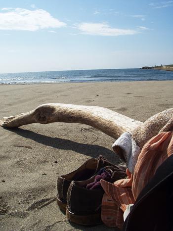 2008年9月 『日本海の旅』 写真展_e0071652_1015815.jpg