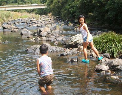 金魚たち、川にはまる・・・_f0096955_1275774.jpg