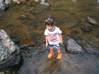 金魚たち、川にはまる・・・_f0096955_1314767.jpg