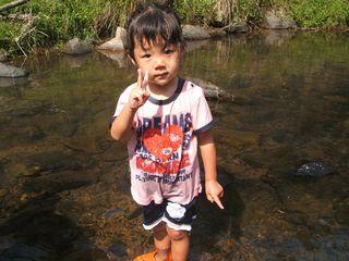 金魚たち、川にはまる・・・_f0096955_1332632.jpg