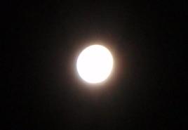 十五夜 お月さん_d0037159_945051.jpg