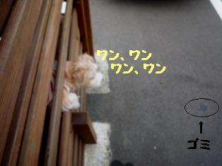 b0137280_2150363.jpg