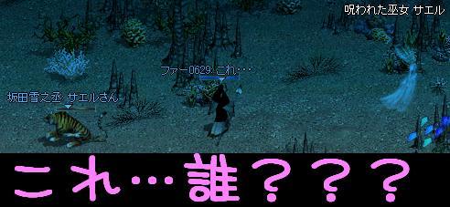 f0072010_7323134.jpg