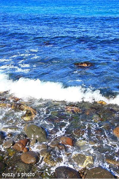 海はいかが?_a0071514_19473053.jpg