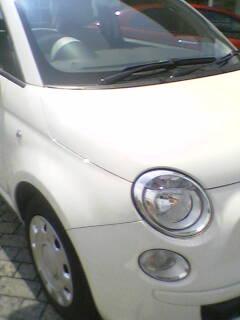 b0040819_230654.jpg