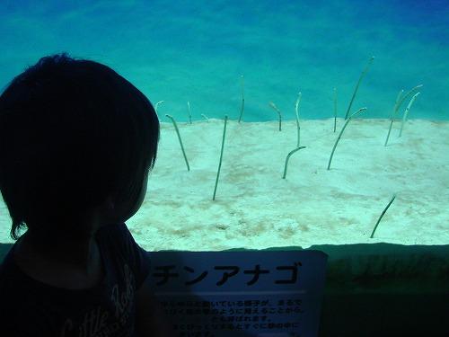 九州家族旅行 1日目_b0132530_181191.jpg