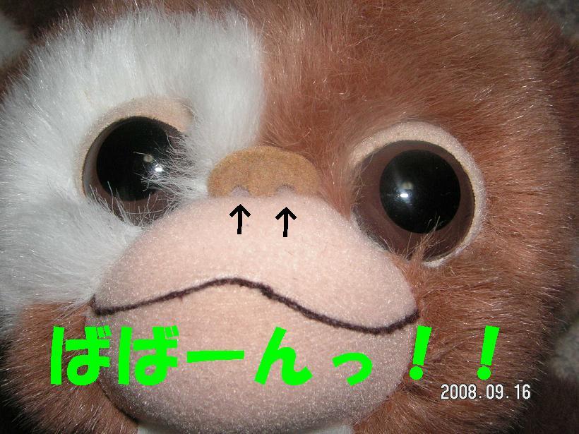 c0179136_13593384.jpg