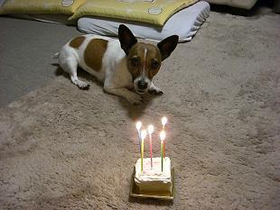 お誕生日ケーキ&お知らせ_d0134867_1433106.jpg