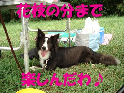 f0132070_2325542.jpg
