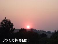 b0050879_856435.jpg
