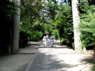 梨の木神社と常林寺_e0048413_20421018.jpg