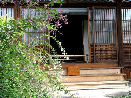梨の木神社と常林寺_e0048413_20435079.jpg
