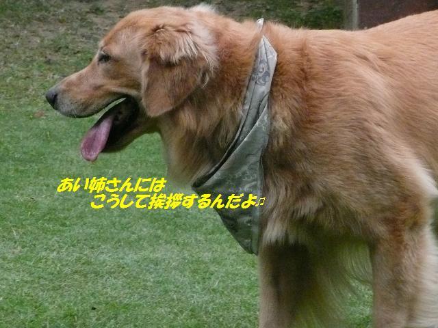 f0114128_16363529.jpg