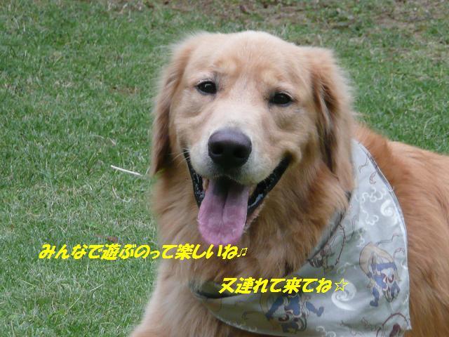 f0114128_1711196.jpg