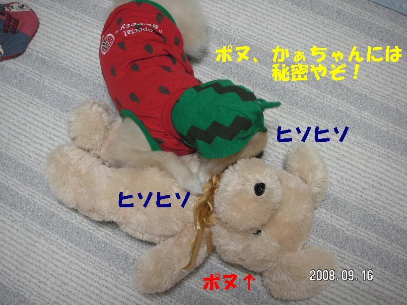 c0179136_1621395.jpg