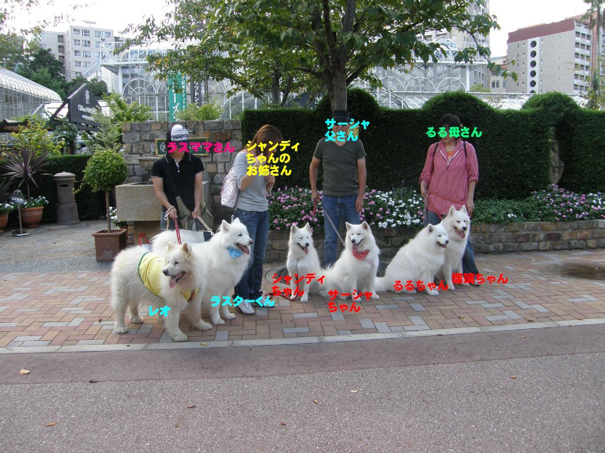 北海道へ旅立つ前に_f0128542_0182832.jpg