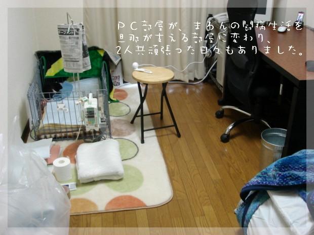 b0078073_13202064.jpg