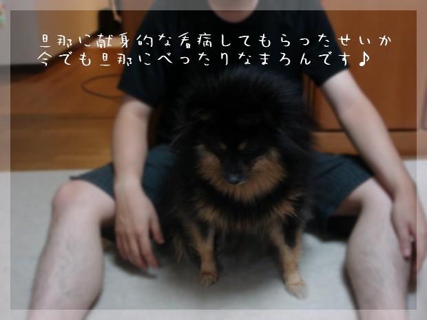 b0078073_1323562.jpg