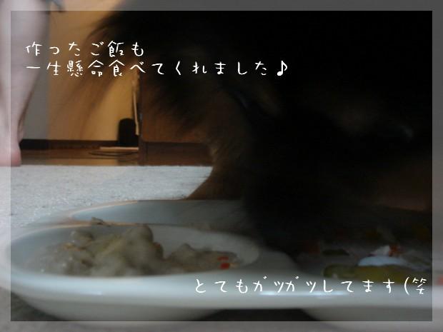 b0078073_13345492.jpg