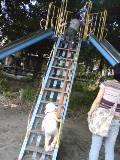e0033324_413987.jpg