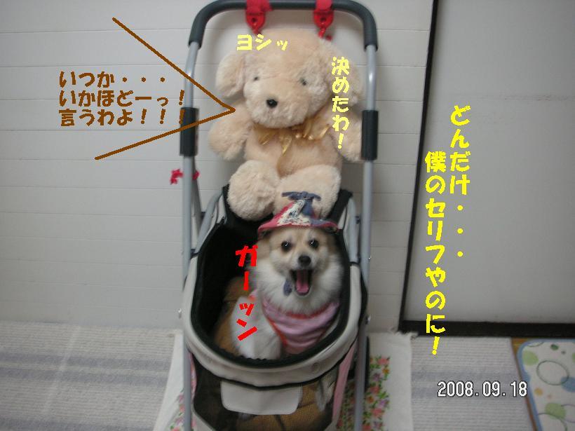 c0179136_18241679.jpg