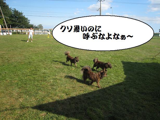 d0057536_12555.jpg