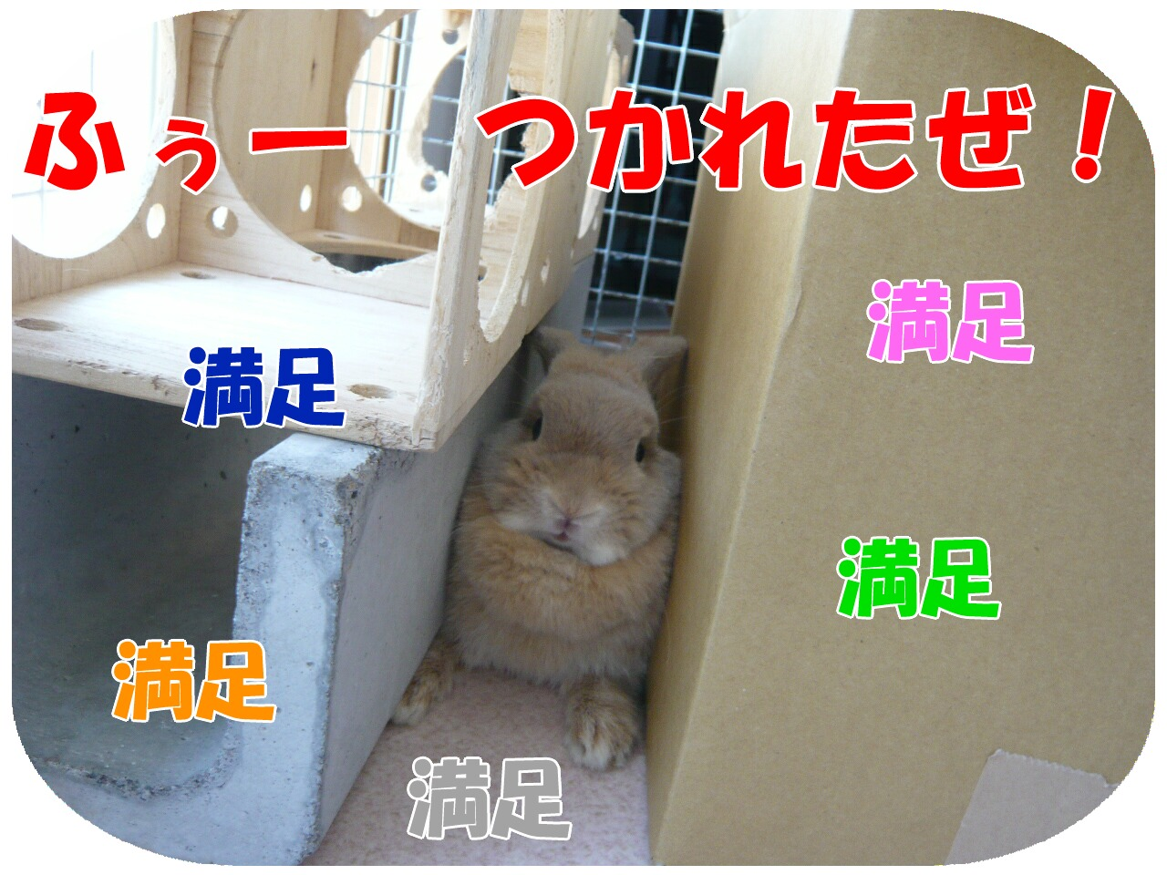 c0151439_17141169.jpg