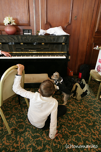 少年とピアノとバブー_c0024345_1724723.jpg