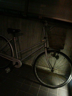 自転車で_a0075684_2175933.jpg