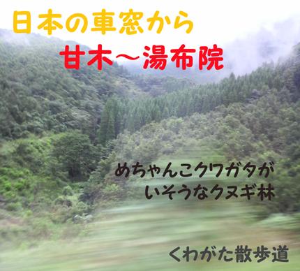 f0183484_2322550.jpg