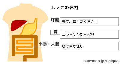 b0023896_072669.jpg